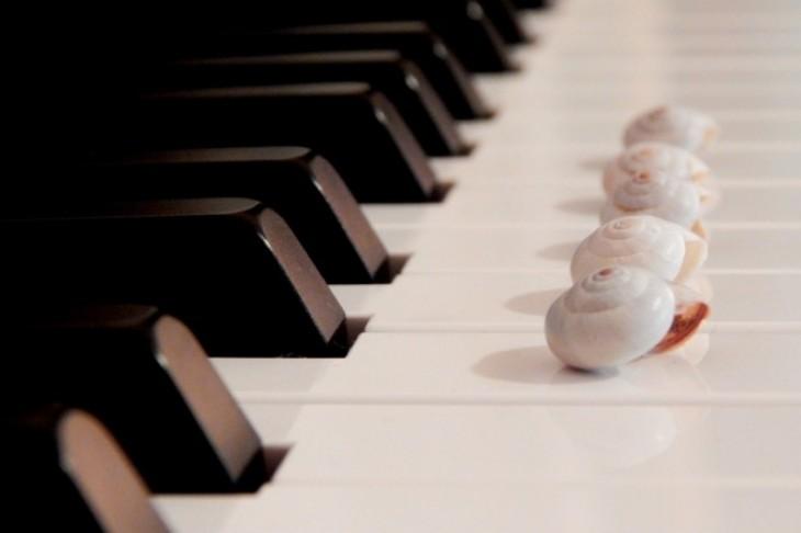Muzika kao lek i isceljujuća frekvencija
