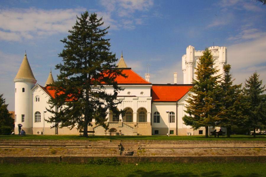 Dvorac Dundjerskih, dvorac Fantast, Bečej